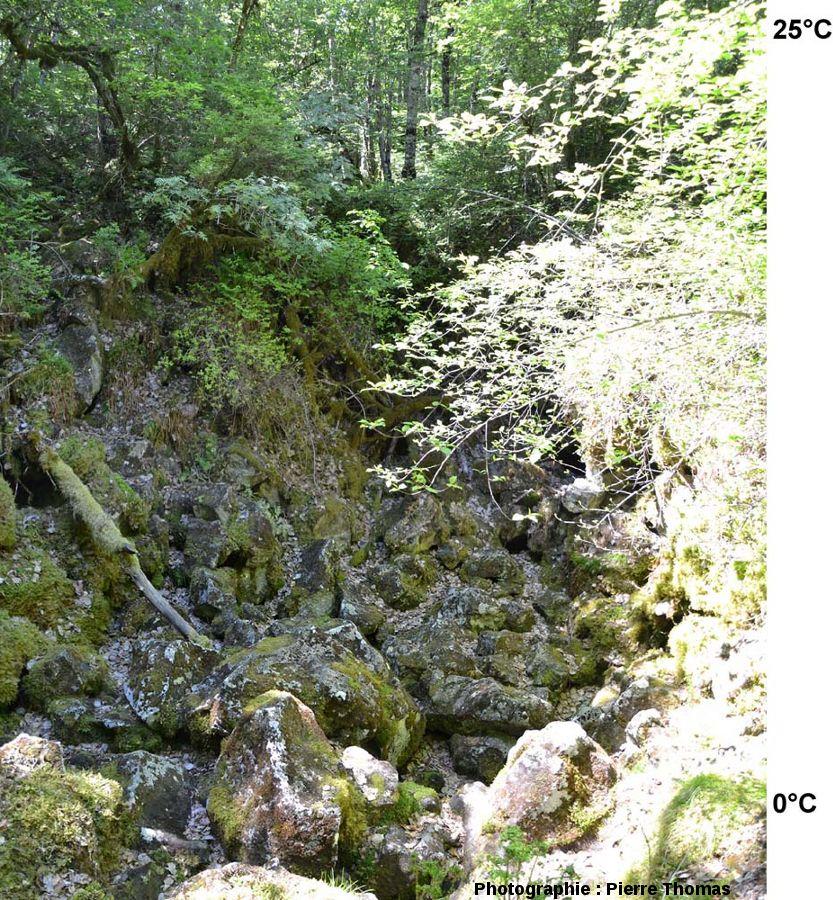 Vue d'ensemble d'un «trou à glace» de la cheire du Puy de Côme