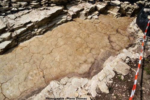 Terminaison de la deuxième fouille qui a révélé une deuxième piste de théropode à Plagne (Ain) lors des fouilles de 2011