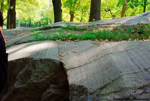 Détail sur stries et cannelures glaciaires, Central Park, New York (USA)