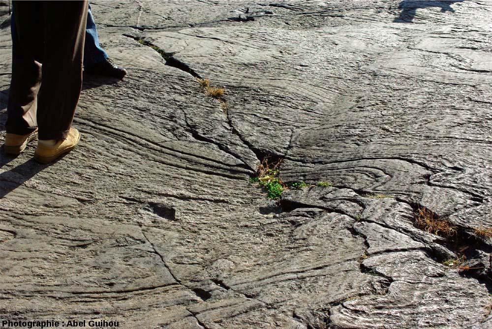 Détail des stries glaciaires et des plis visibles sur le sommet de l'affleurement à plis et figures glaciaires, Central Park, New York (USA)