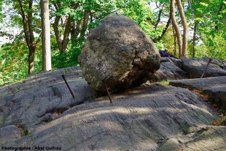 Vue rapprochée d'un bloc erratique, Central Park, New York (USA)