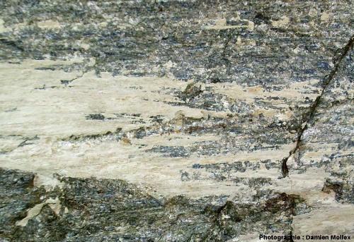 Placage de farine glaciaire, gros plan, front du glacier des Quirlies, Massif des Grandes Rousses, Isère