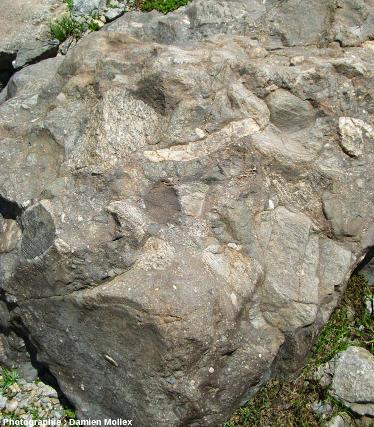 Le conglomérat carbonifère du lac des Quirlies, Massif des Grandes Rousses (Isère)