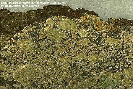 Zoom sur un conglomérat (poudingue) à galets de pyrite (FeS2) interstratifié avec des silts et argilites noires, Archéen du Witwatersrand, Afrique du Sud