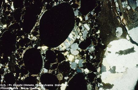 Lame mince (lumière polarisée-analysée) d'un autre fragment de ce conglomérat à galets de pyrite, Archéen du Witwatersrand, Afrique du Sud