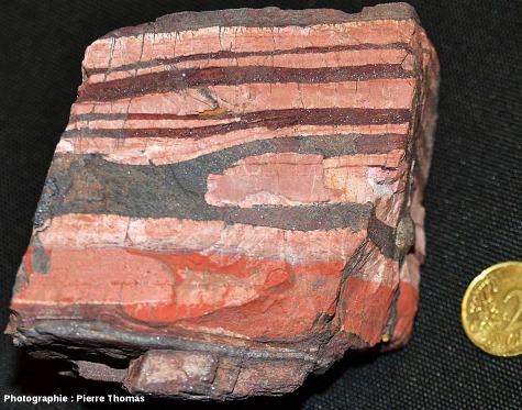 Échantillon de fer rubané (Banded Iron Formation = BIF), collecté au bord de la R 40, 30km au Sud de Barberton (Afrique du Sud)