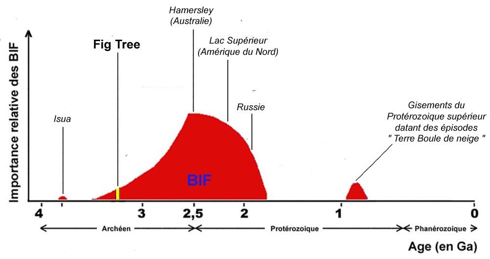 Évolution de l'importance relative des BIF (fers rubanés) au cours des temps géologiques