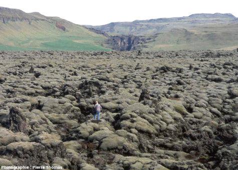 Un secteur de la coulée du Lakagigar (Laki en français) près de la côte Sud islandaise