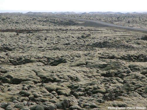 Vue d'un secteur de la coulée du Lakagigar (Laki en français) près de la côte Sud islandaise