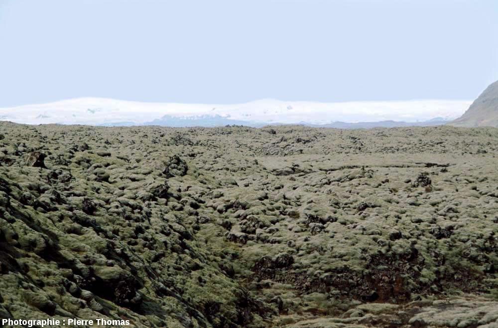 Vue sur la coulée du Laki (Islande) prise en direction de l'Ouest