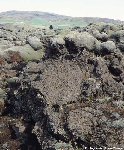 Mousses et structures géologiques, coulée Laki (Islande)