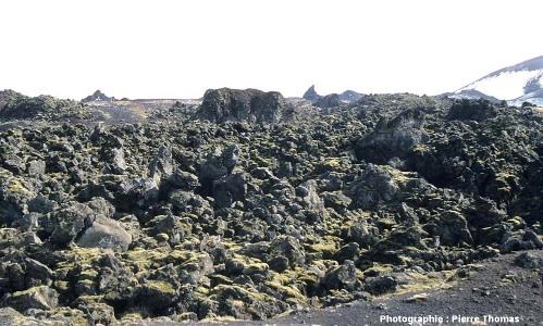 Vue d'ensemble de la coulée de l'Helgafell (île d'Heimaey, Islande du Sud), coulée aa émise en 1973 et photographiée en 2002