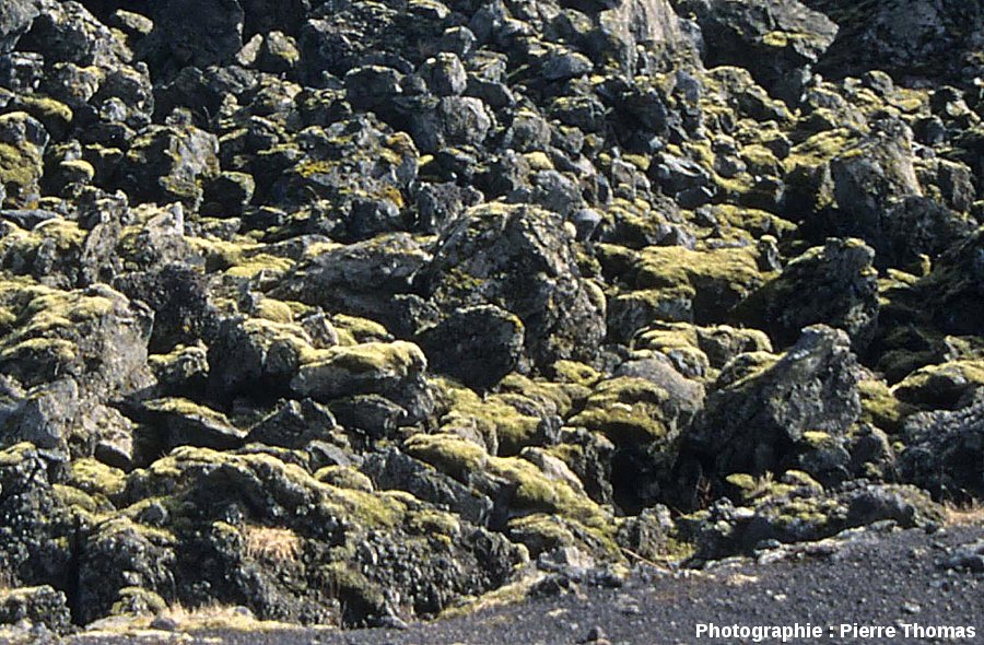 Zoom sur un secteur de la coulée de l'Helgafell (île d'Heimaey, Islande du Sud), coulée aa émise en 1973 et photographiée en 2002