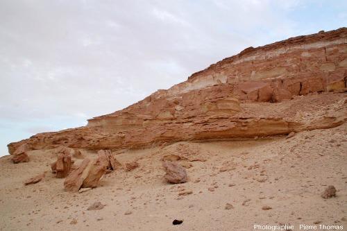 Cadre géologique des filonnets de gypse fibreux, série argilo-marneuse du Miocène, oasis de Siwa (Égypte)