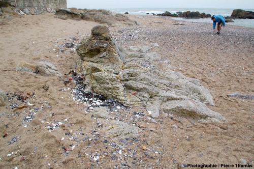 La plage de la Mine, Piriac-sur-Mer (Loire Atlantique) et son rocher traversé par le filon de pegmatite à structure harrisite, bordure Nord du granite de Guérande