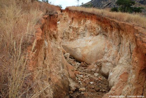 Savane malgache sur substratum granitique, au sein duquel se développe une altération produisant une arène et épargnant quelques «boules» encore saines
