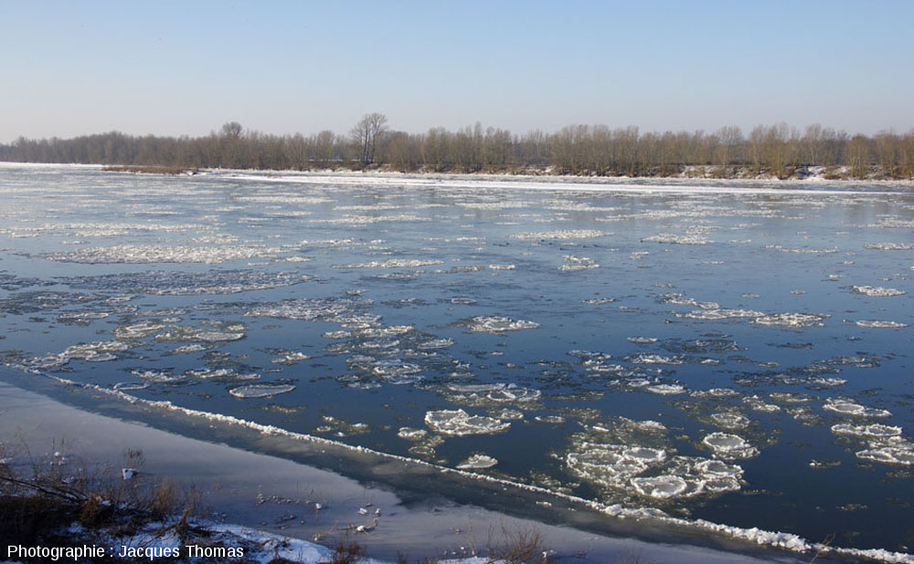 Pancake ice sur la Loire à Albœuf, commune de Bou, Loiret