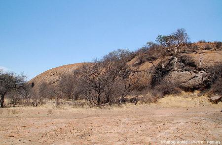 L'inselberg granitique des Three Sisters, Afrique du Sud, couvert de quelques arbres