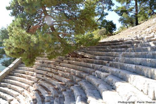 Théâtre antique d'Arycanda (Turquie), gradins localement soulevés par les racines d'un pin