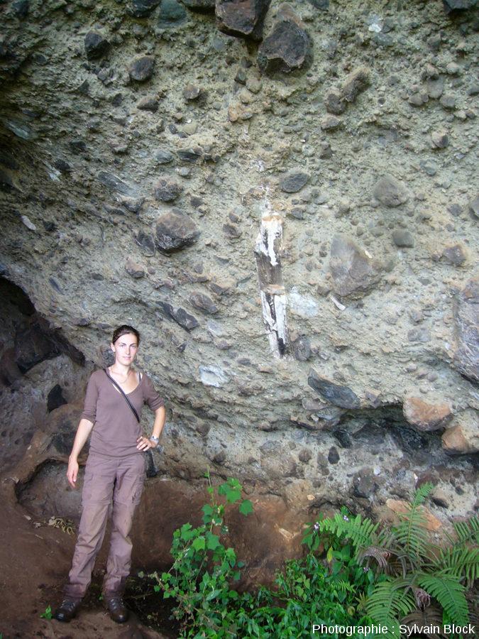 Coulée pyroclastique avec tronc d'arbre silicifié, flanc Nord-Ouest du Mont Elgon, Ouganda