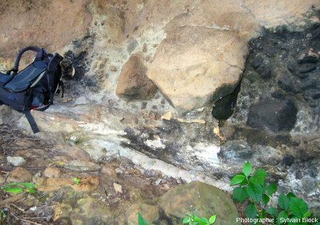 Tronc silicifié, en position horizontale, donc transporté, coulée pyroclastique flanc Nord-Ouest du Mont Elgon, Ouganda