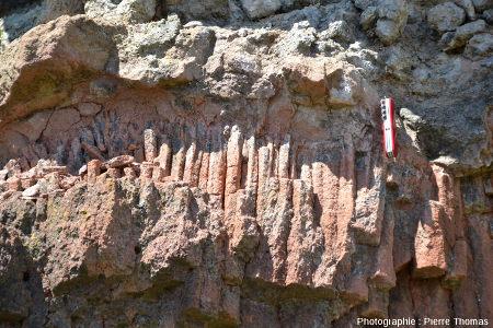 Base de coulée de basalte à semelle scoriacée, sur argiles sableuses prismées, Marjallat (Haute Loire)