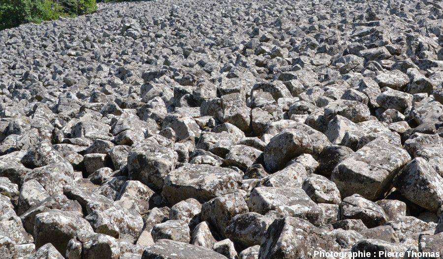Blocs basaltiques du pierrier, ou chaos rocheux, connu sous le nom de clapas de Thubiès