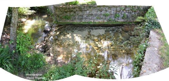 Les stromatolithes du ruisseau de la cascade pétrifiante de Saint Pierre -Livron (Tarn et garonne) entre le pont de la D97 et la confluence avec la Bonnette