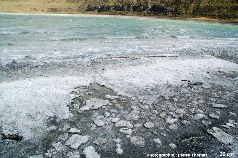 La Laguna Amarga (Patagonie chilienne) et ses stromatolithes actuels