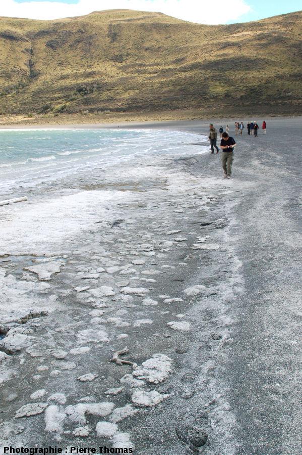 Plage à stromatolithes de la Laguna Amarga et vagues déferlantes