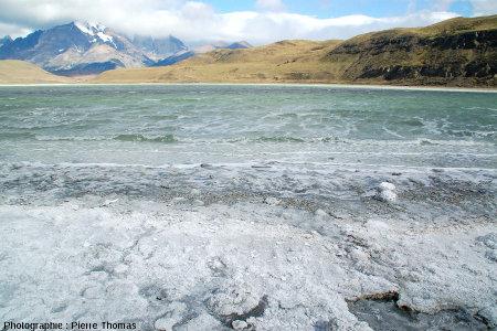 Plage de la Laguna Amarga, Patagonie du Sud (Chili)