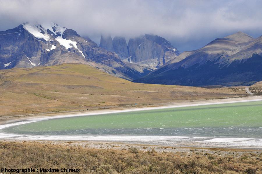 Vue globale de la partie Sud-Est de la Laguna Amarga, Patagonie du Sud (Chili)