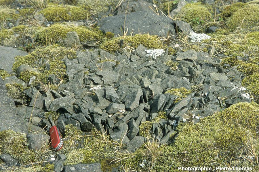 Bloc éclaté par cryoclastie, Islande