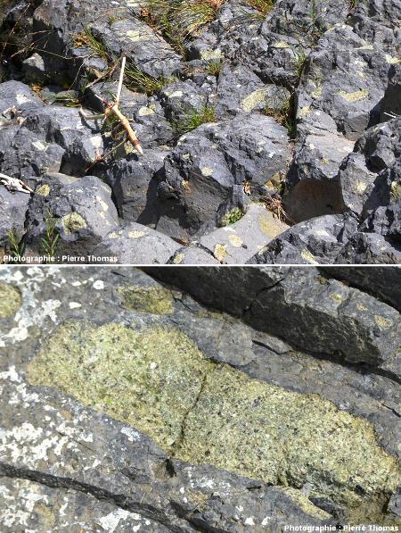 Basalte ardéchois et l'un de ses nodules de péridotite, Burzet