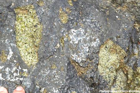 Xénolithes de péridotite dans un affleurement de basalte, Burzet (Ardèche)