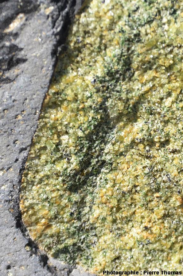 Gros plan sur une enclave de lherzolite traversée par une zone étroite de pyroxénite très riche en clinopyroxènes chromifères, coulée du Ray Pic, Burzet, Ardèche