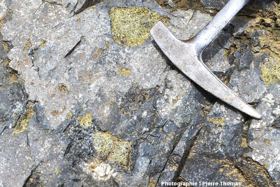 Enclaves dont une enclave de pyroxénite, vraisemblablement une orthopyroxénite vue sa couleur noire au sein du basalte de la coulée du Ray Pic