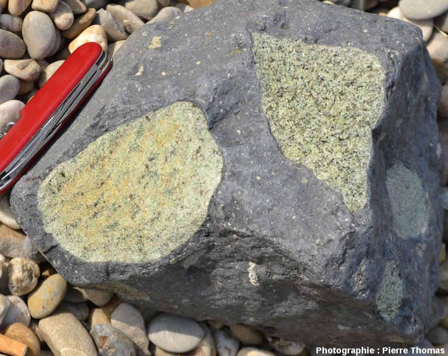 """Galet d'une plage de la Bourges montrant un nodule """"normal"""" (à droite), et un nodule """"à grain fin"""" (à gauche) présentant une belle foliation"""