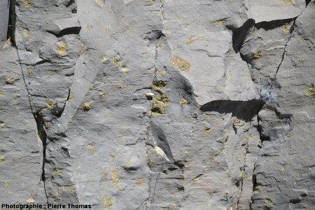 Basalte prismé avec nodule de péridotite fractué, coulée du Ray Pic, Ardèche