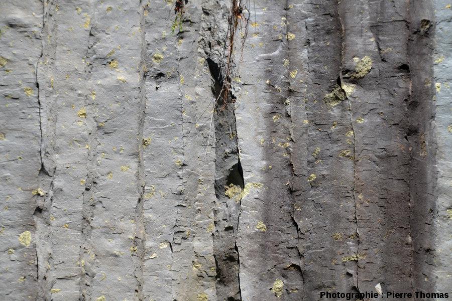 Coulée de basalte à nodules décalés par la prismation, coulée du Ray Pic, Ardèche