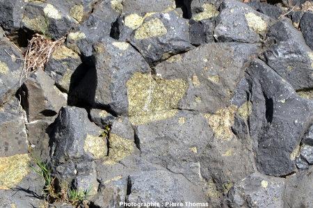 Nodule de péridotite appartenant à 3 prismes à la fois (vu de dessus), fracturé par 3 limites de prisme