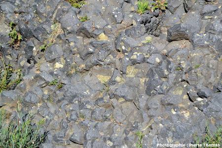 Nodule de péridotite appartenant à 3 prismes à la fois