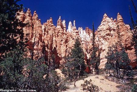 Bryce Canyon, en contrebas du rebord du plateau, en se promenant au pied des hoodoos