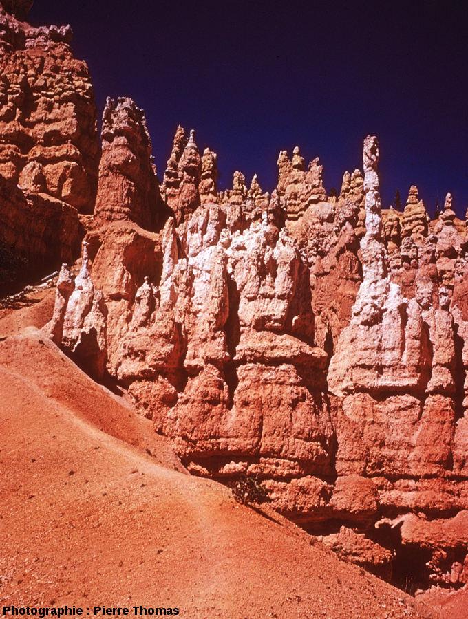 Bryce Canyon, en contrebas du rebord du plateau, en se promenant entre des hoodoos