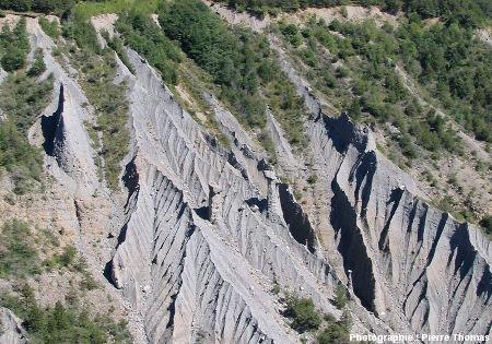 Les badlands et les cheminées de fée de la rive gauche du torrent de Théus, Hautes Alpes