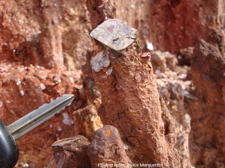 Mini-cheminée de fée chapeautée par un cristal de muscovite, dans une latérite en cours d'érosion le long d'une route près de Kourou, Guyane
