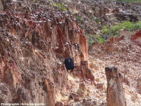 Vue générale sur des mini-cheminées de fée chapeautées par des cristaux de muscovite, Kourou (Guyane)