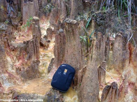 Mini-cheminée de fée chapeautée par un fragment de croûte ferrugineuse, bord de route près de Kourou, Guyane