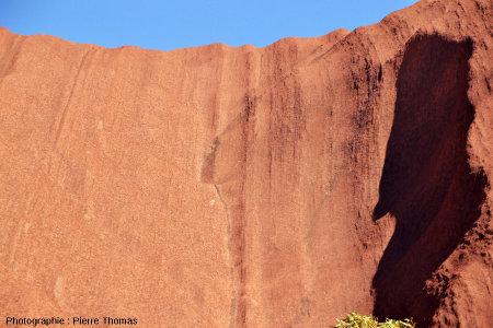 Vallée sèche située sur le flanc Sud-Est d'Uluru