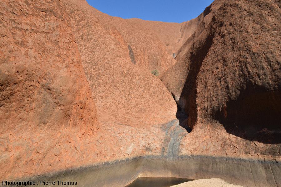 Trou d'eau dans le lit asséché du ruisseau d'une vallée sèche sur le flanc Sud-Est d'Uluru